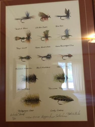 Argentine fly picture in the lodge